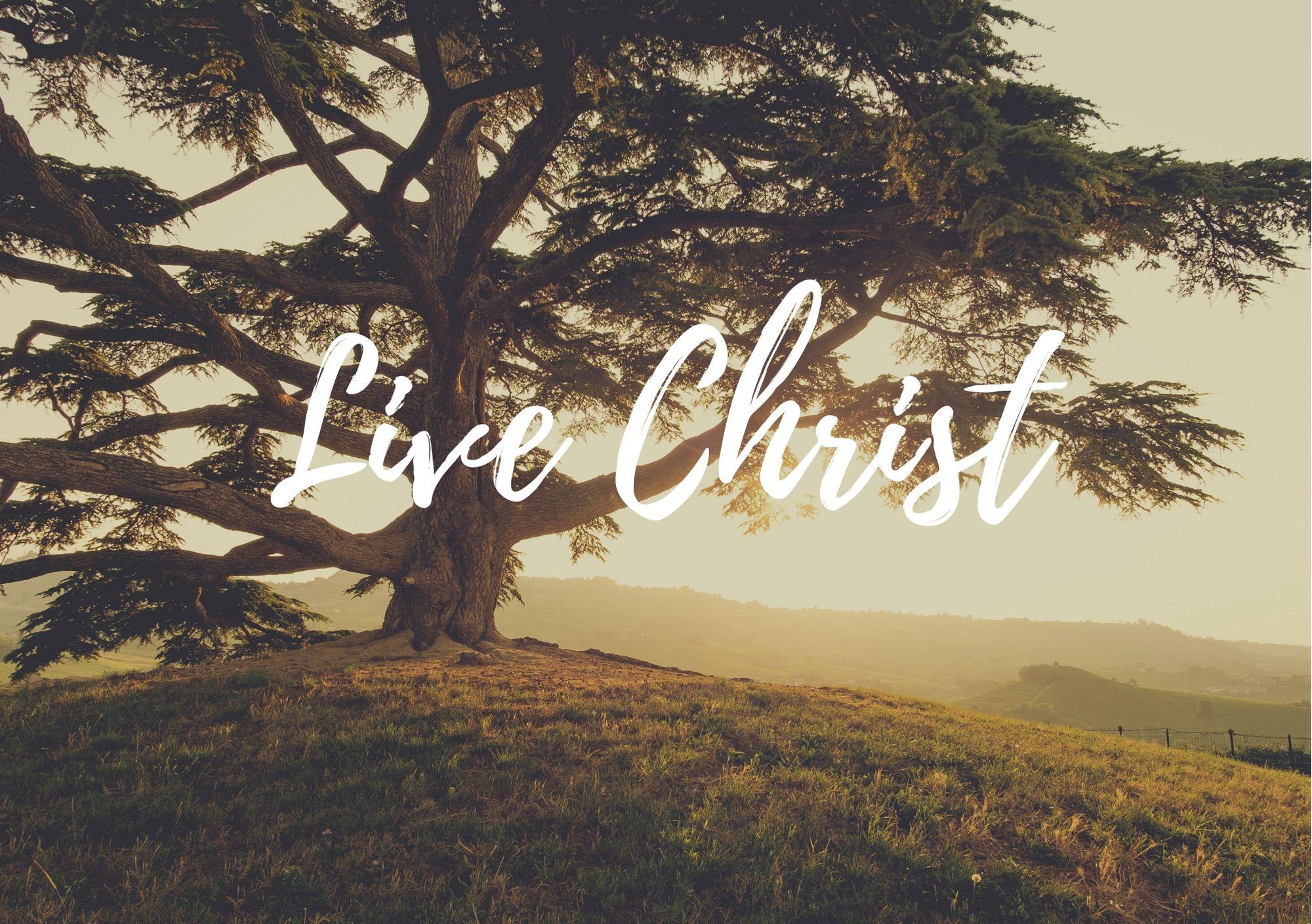 Live Christ
